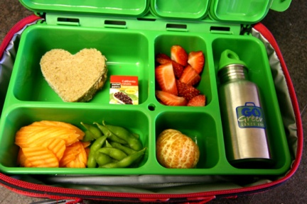 go-green-lunch-box-2