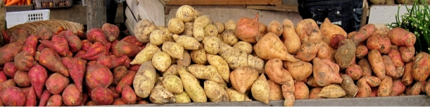 Sweet_potatoes,_Padangpanjang