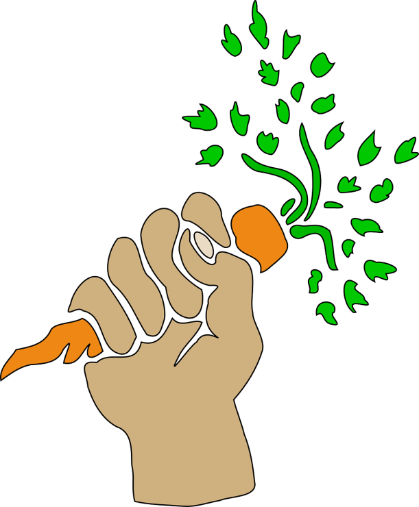 carrot-144965_1280
